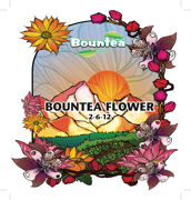 Picture of Bountea Flower, 1 gal