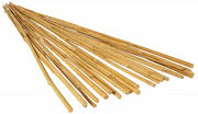 Picture of GROW!T 4' Bamboo Stakes, Natural, pack of 25