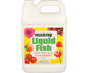 Picture of Maxicrop Liquid Fish, 1 gal