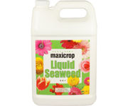 Picture of Maxicrop Liquid Seaweed, 1 gal