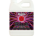Picture of Mighty, 1 qt